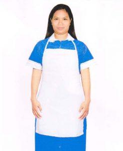 Philippine Maid Agency Selangor